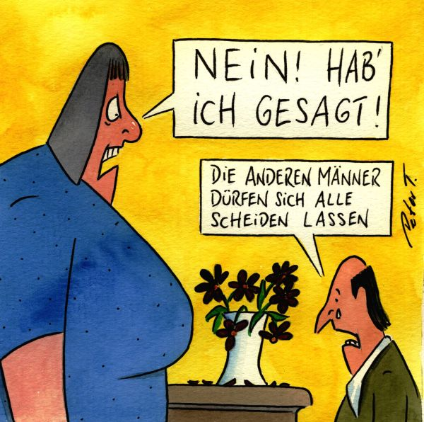 Scheidung cartoon