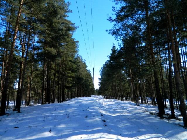 path to Salaspils