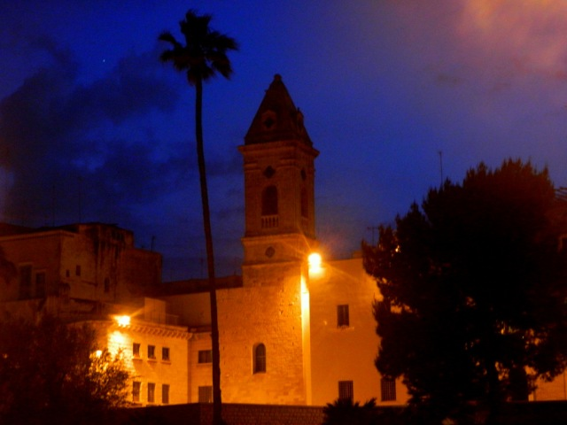 church palm tree Bari
