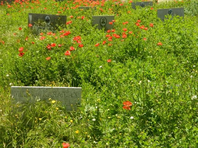 flowers grave necropoli Bari