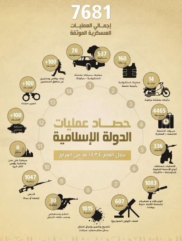 ISIS report 2013 infographic
