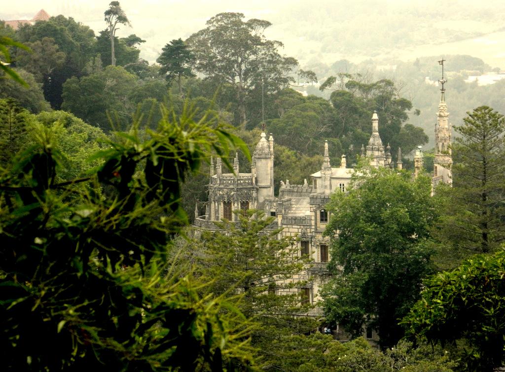 Schloss durch Wald.JPG