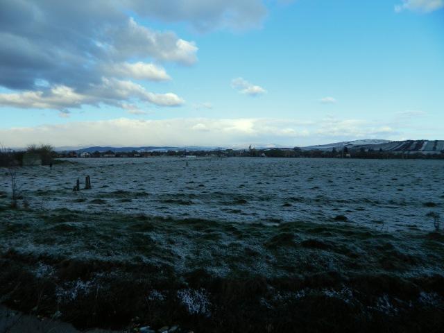 field Razboieni