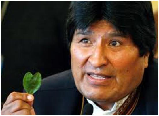 coca Morales