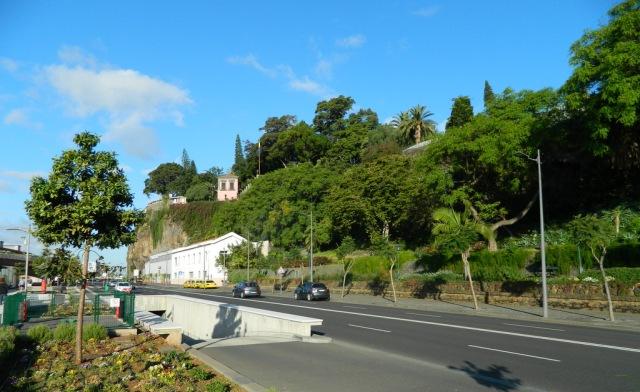 grün Funchal.JPG