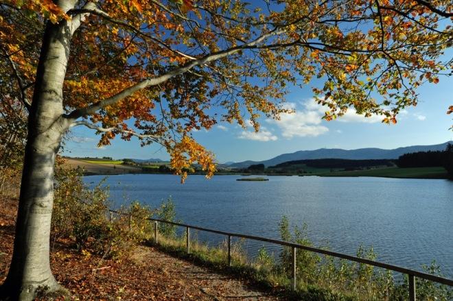 Drachensee bei Eschlkam_DSC3477.jpeg
