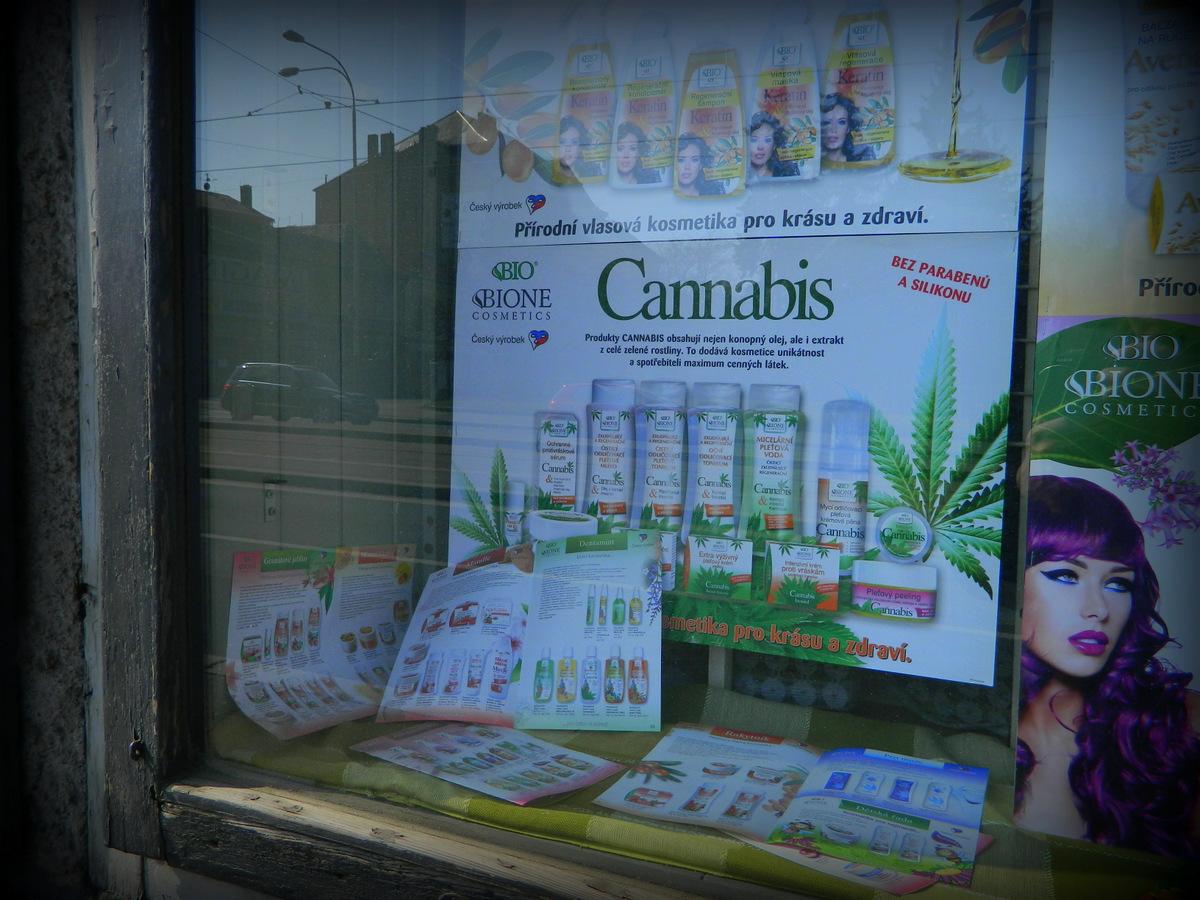 cannabis Pilsen.JPG