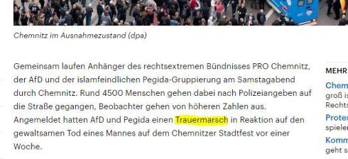 Trauermarsch DLF.JPG