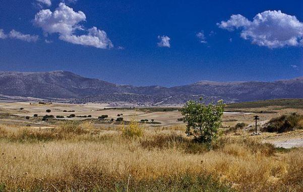 Venta Micena landscape.JPG