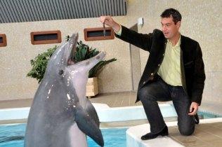 Söder Delphin