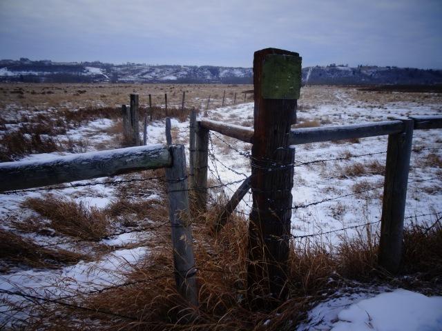 Zaun Eingang.JPG