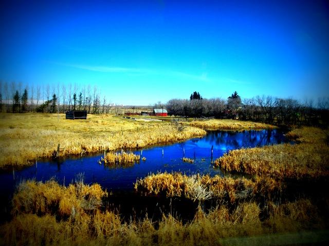 Landschaft Prärie 1.JPG