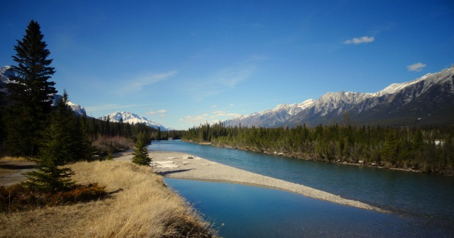 Bow River (2)