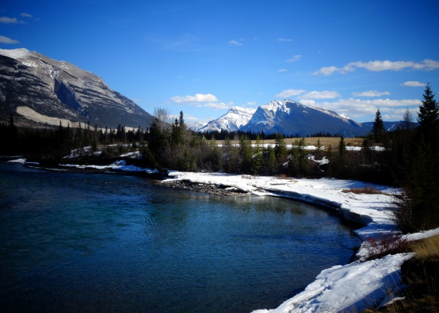 Bow River (4)