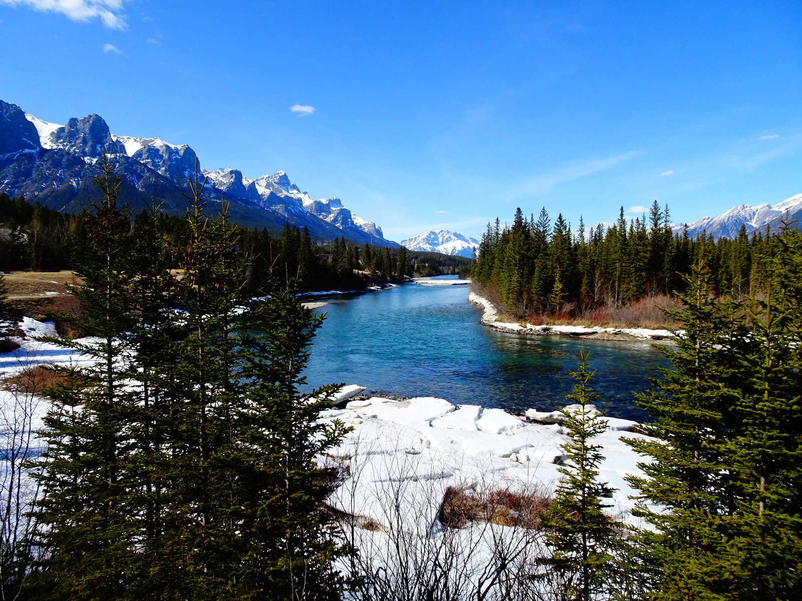 Bow River (5)