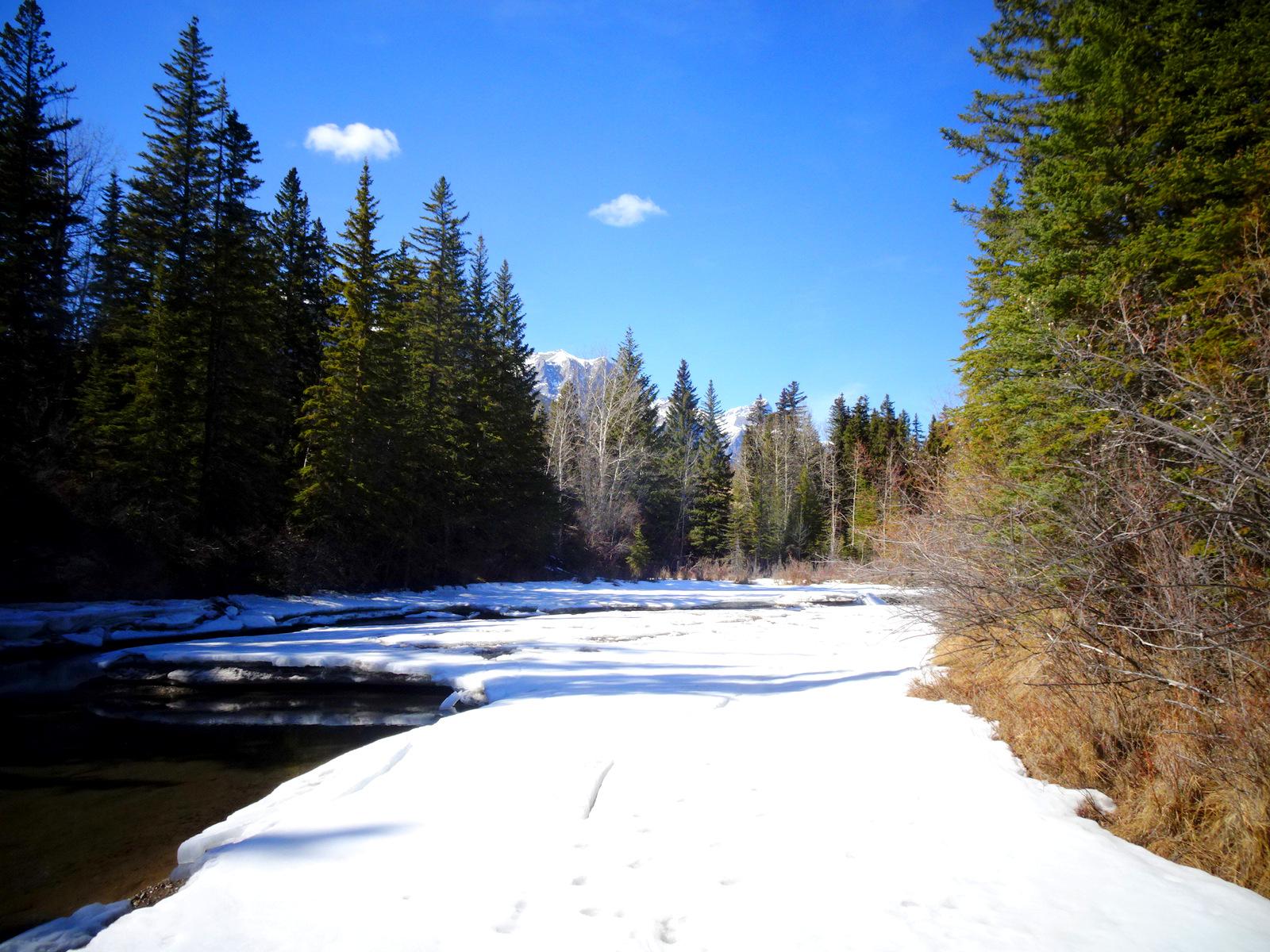 Bow River Eis