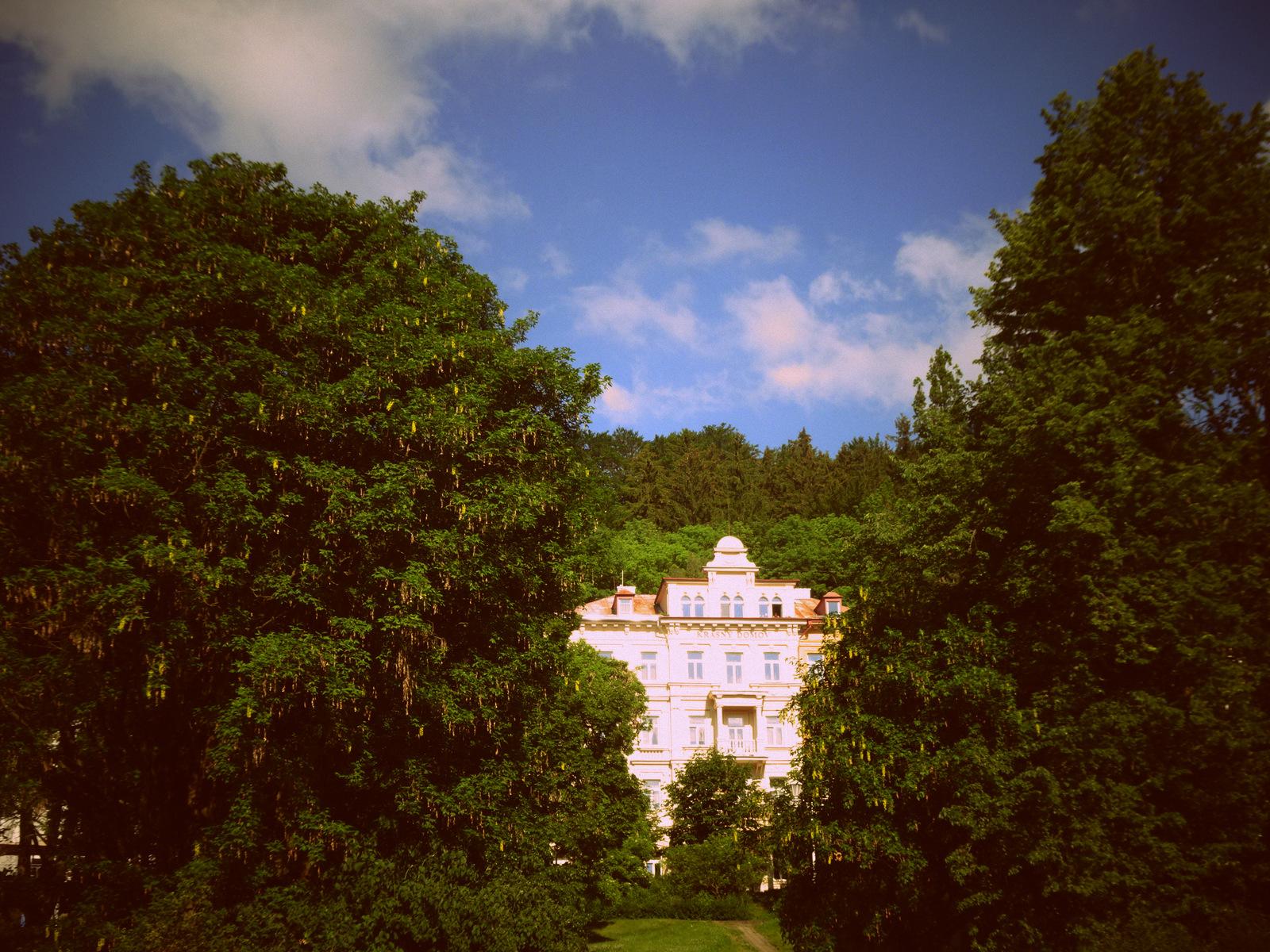 Haus grün 1