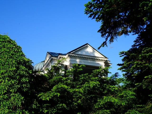 Haus grün 2