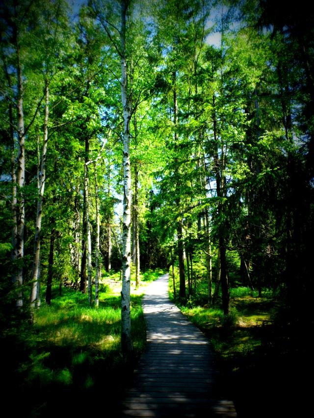 Holzweg 2