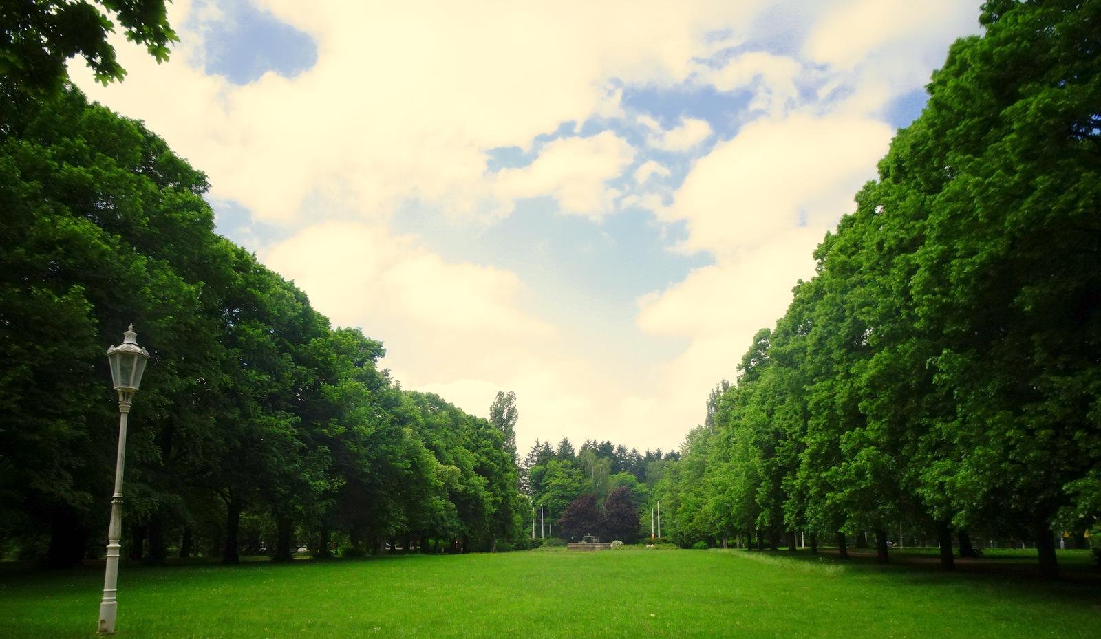 Park allein 1