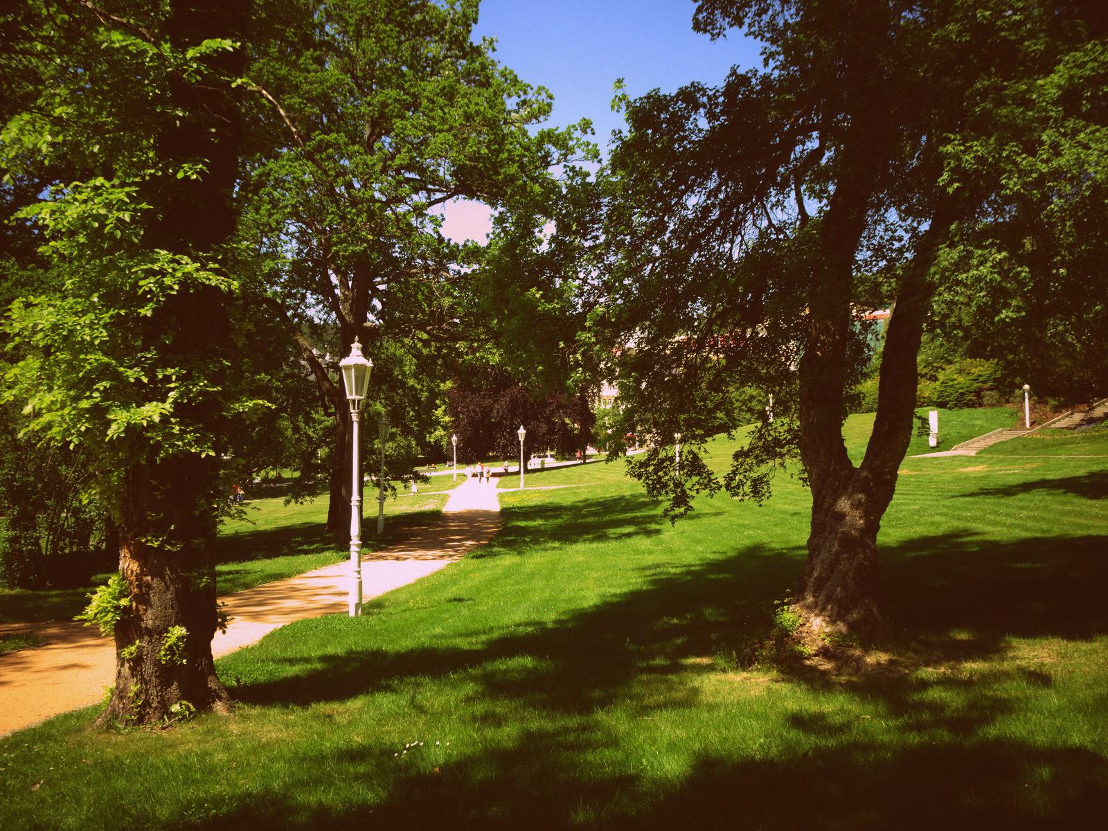 Park allein 4