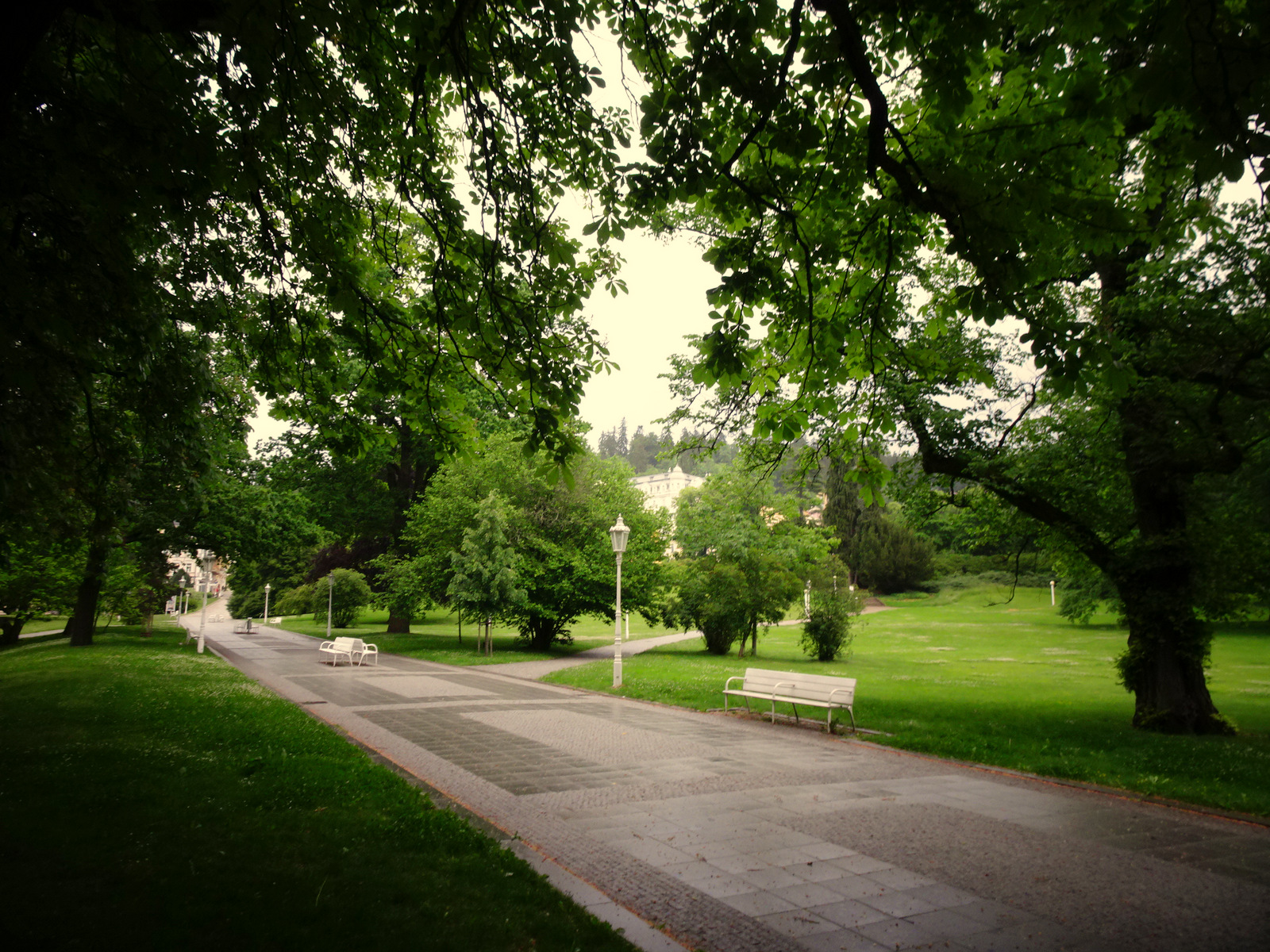 Park allein 7