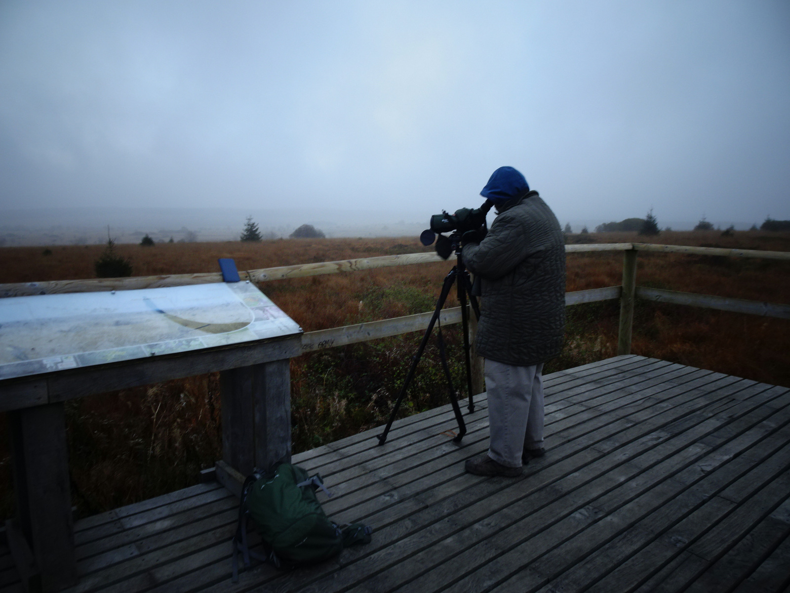 Ornithologe Hohes Venn