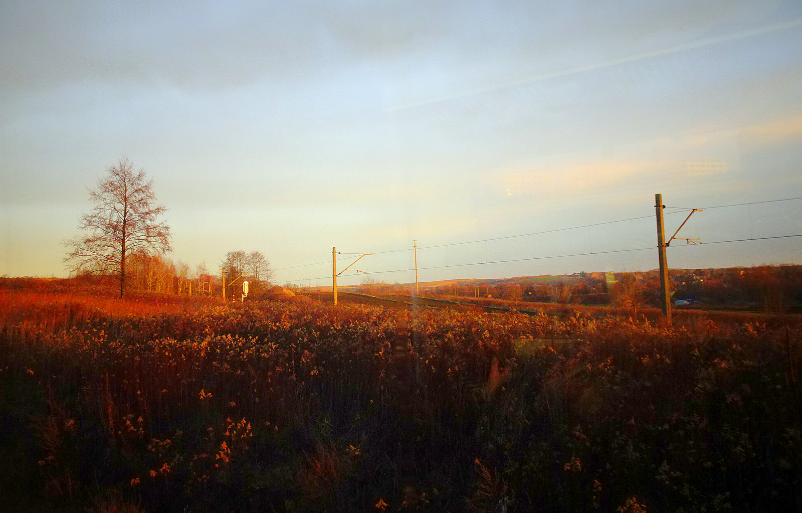 goldener Morgen (1)