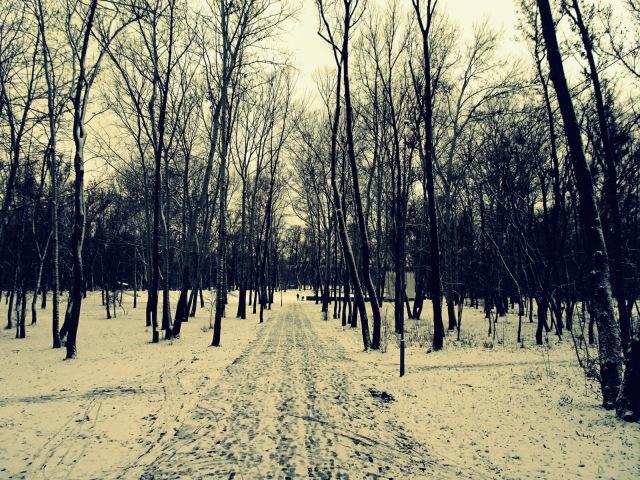 Schnee (2)