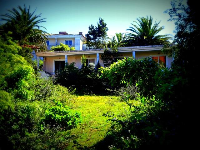 Hotel Pico garden