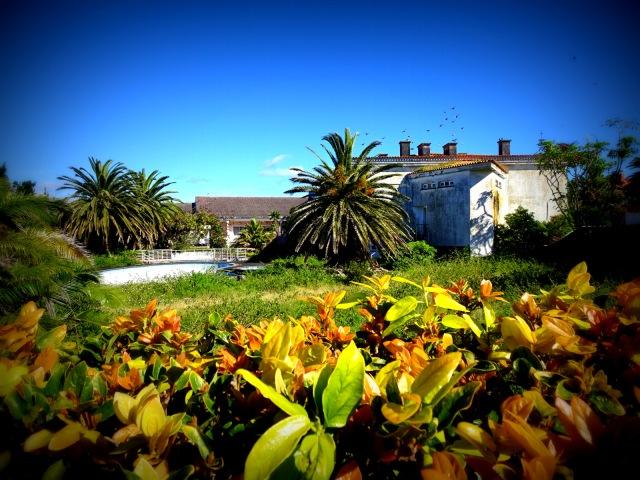 Hotel Pico pool far