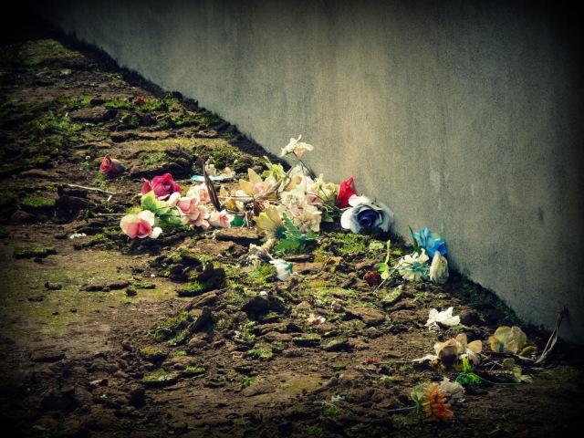Lajes cemetery (1)