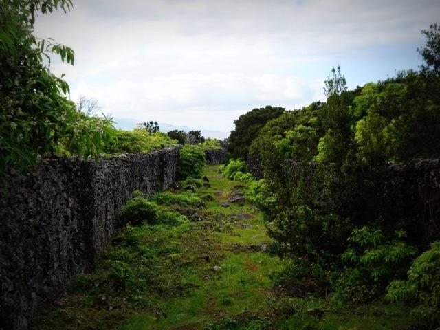 lava path (1)