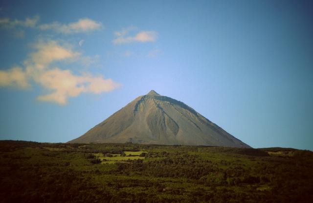 Pico (1)