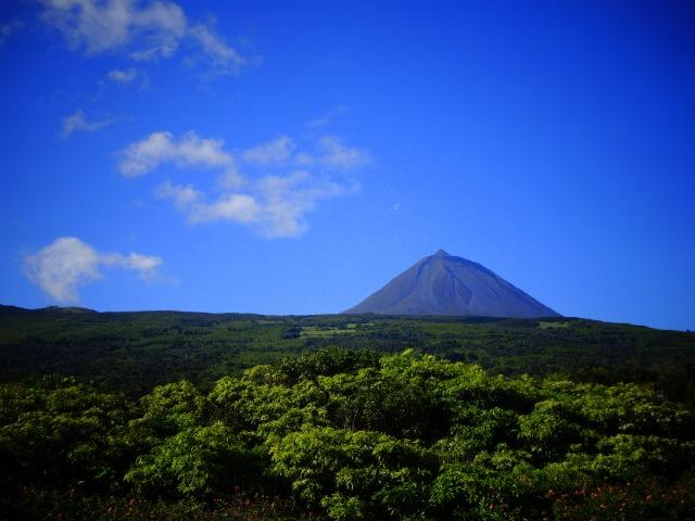 Pico (2)